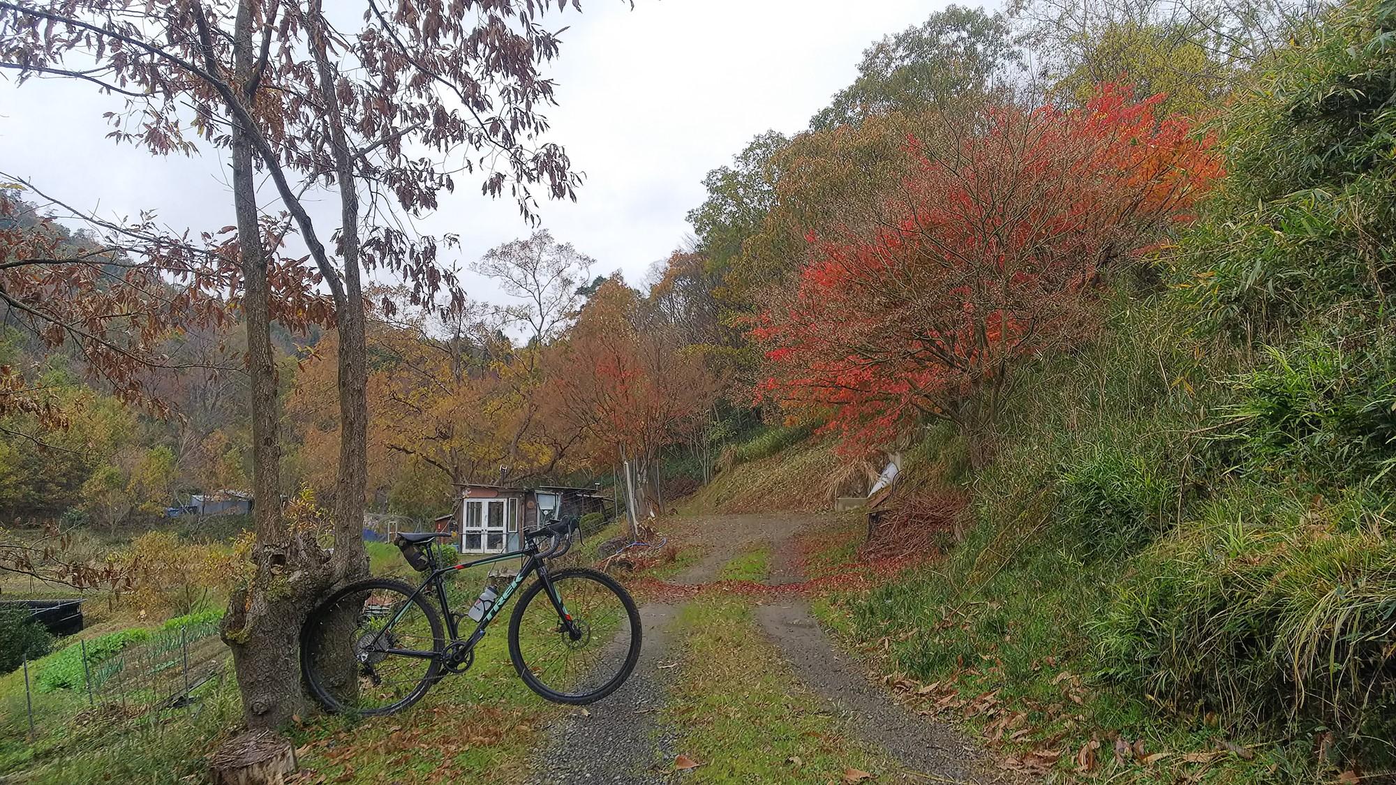 Autumn in SATOYAMA  ~秋の里山、北摂グラベルライド~