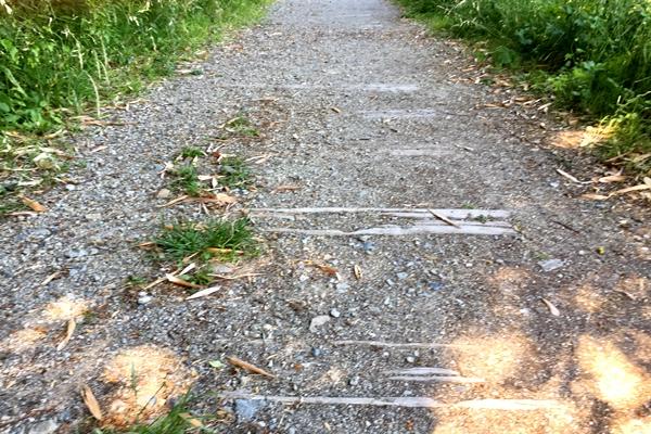 【スタッフライド】JR旧福知山線は自転車走行できません…