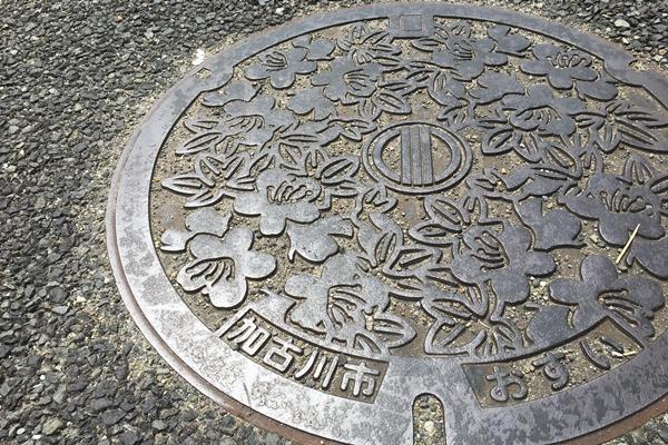 TREK 加古川市