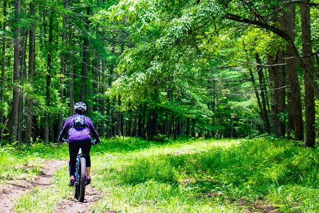 MTBでゆるゆる林道サイクリング! Full Stache8&Stache9.7でゆく、八ヶ岳林道ライド