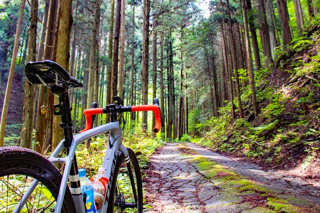 夏は山サイクリングで涼む!? グラベルロード Checkpoint SL5でゆく、一ツ木線&東山中部林道グラベルライド!