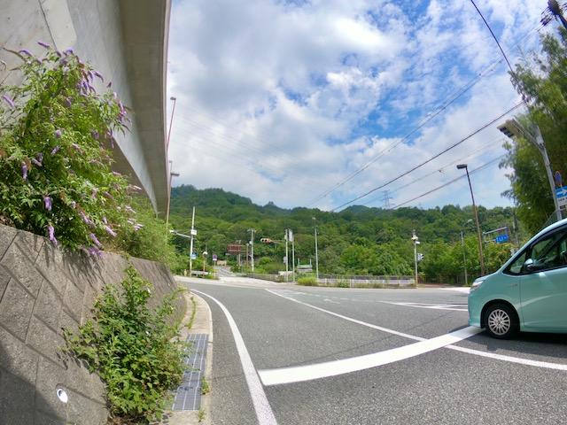 スタッフ北川が行く、六甲山ライド!!