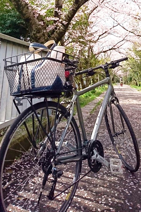 クロスバイクに荷物載せよう ~もうリュックは背負いたくない~