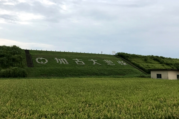 TREK 稲美町 ロングライド