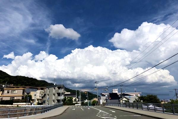 【Dual Sport+ Verve+】神戸の激坂、e-bikeで走ろう
