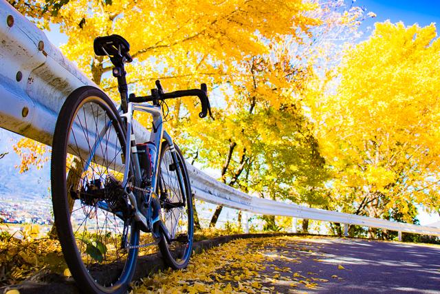 秋は自転車で紅葉を満喫しましょう〜♪ テンチョー望月オススメ・山梨の紅葉スポット2019