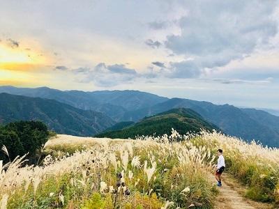【スタッフライド日記】岩湧山へススキを見に行こう!!