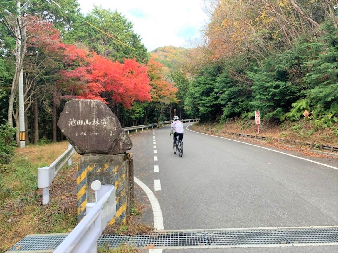 池田山に紅葉を見にいこうよう!Part2