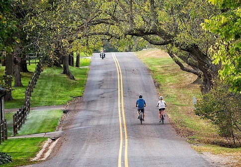 実は運動効果が高い!話題のe-bikeで自転車通勤はじめてみませんか