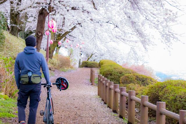 ロードバイクでお花見サイクリング!in 金川曽根広域農道