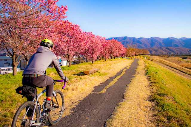 三密を避けて。今こそスポーツバイクで自転車通勤を始めませんか?