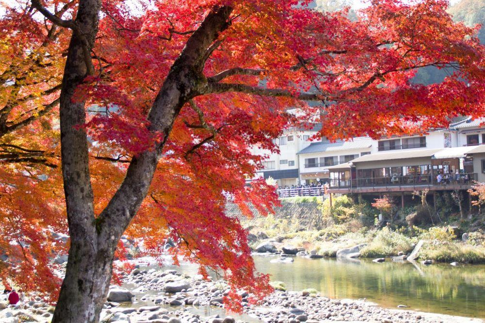 香嵐渓へ紅葉狩りライドに行ってきました!