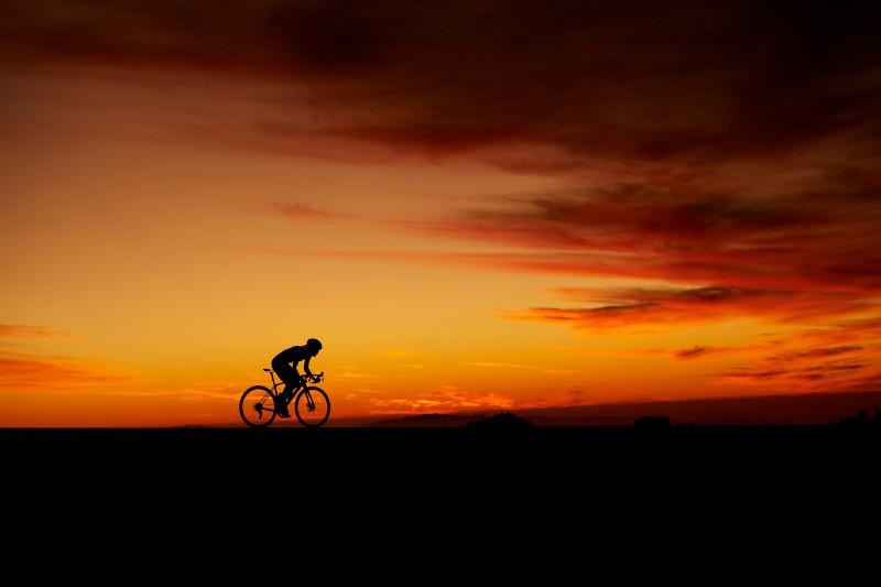 TREK Bicycle 松山【最新在庫状況】ロードバイク編 ※随時更新