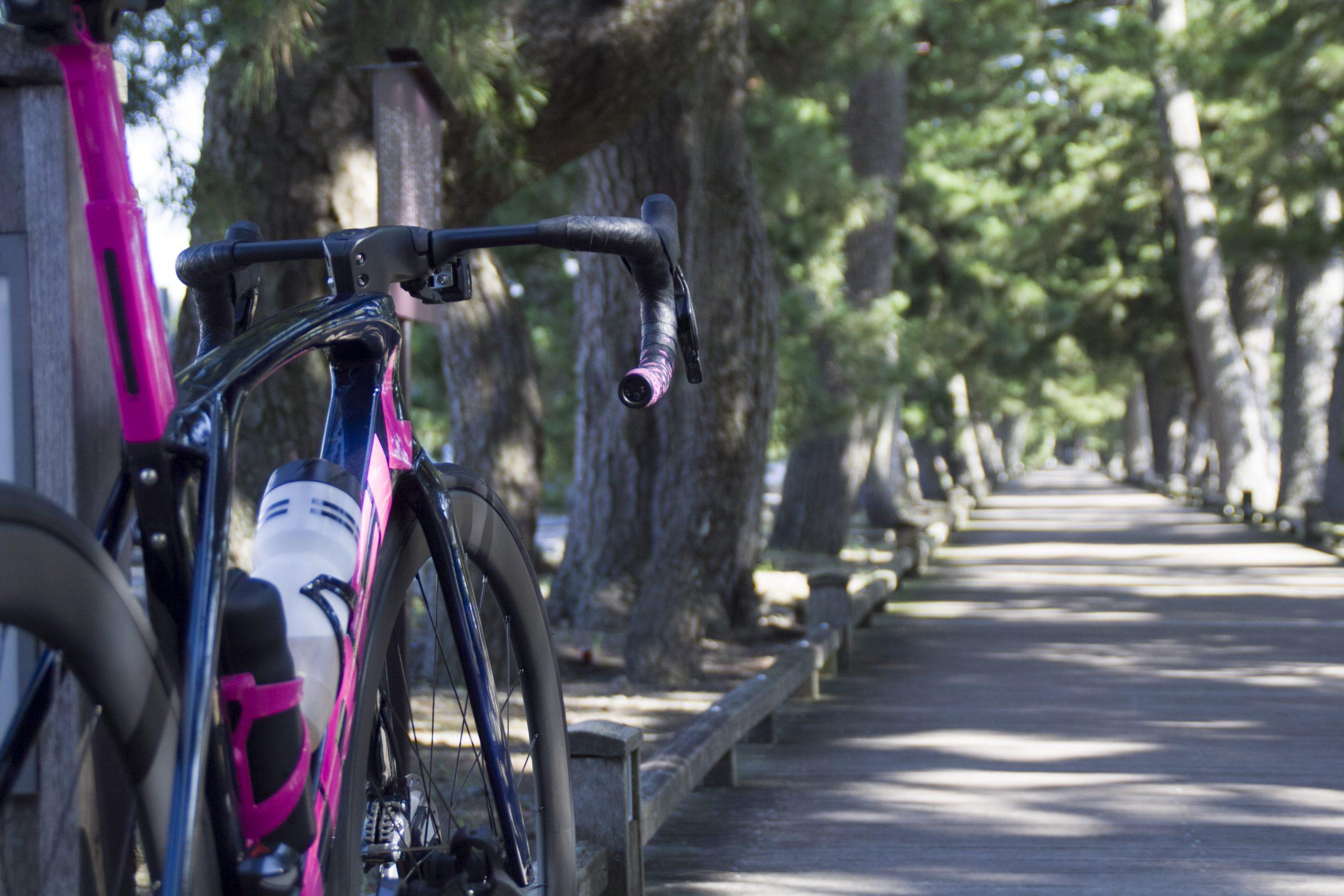 【スタッフライド】日本平ヒルクライム&三保の松原へ行ってきました!